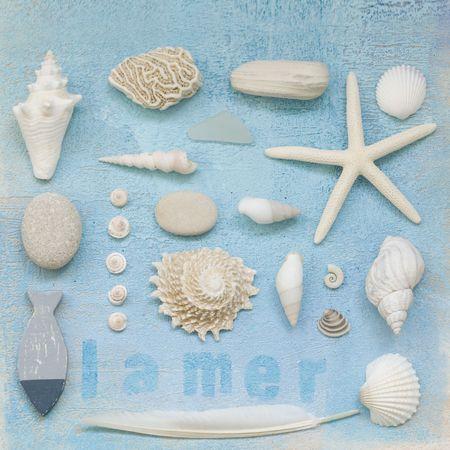 껍질과 다른 해변 flotsam 콜라주 페인트 배경, 아트웍을 만들고 자신에 의해 그린