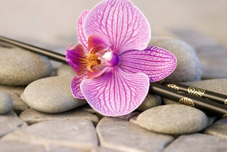 pink orchid flower and chopstick on pebble photo