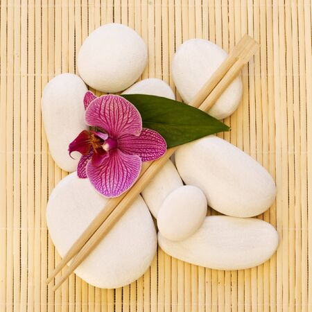 still life with pink orchid flower and white pebble photo