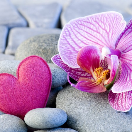 pink felt heart and orchid on pebble Stock Photo - 4317905