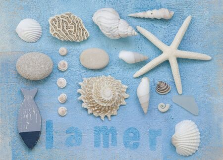 collage of shells and other beach flotsam on painted background, artwork is created and painted by myself photo