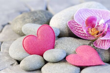 pink felt heart and orchid on pebble Stock Photo - 4370027