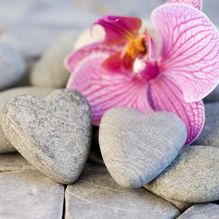 still life with heart shaped pebble and orchid photo
