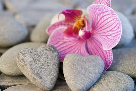 still life with heart shaped pebble and orchid Stock Photo - 4558272