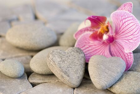 still life with heart shaped pebble and orchid Stock Photo - 4634966