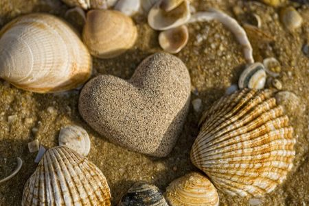 stone heart and shells