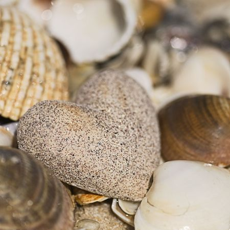 stone heart and shells on the beach photo