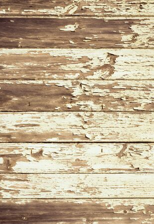 distressed: background grunge wood texture Stock Photo