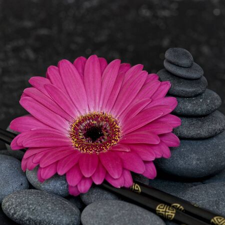 pink gerbera and stone tower Stock Photo - 5608303