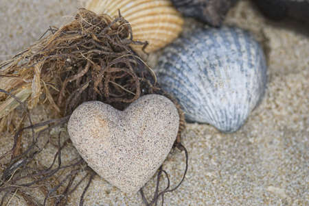 sand heart and shells on the beach photo
