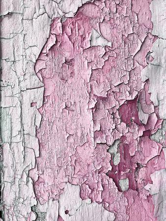 peeling paint: tavolato in legno con rosa peeling vernice Archivio Fotografico