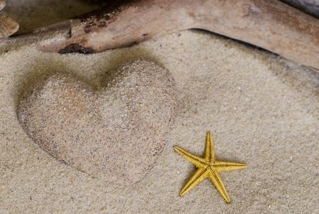 heart made of sand and driftwood Stock Photo - 5769986