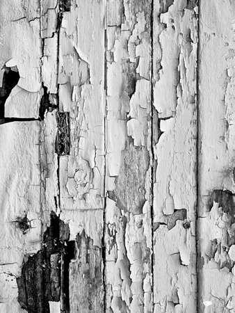 peeling paint: tavolato in legno con peeling immagine di vernice in bianco e nero  Archivio Fotografico