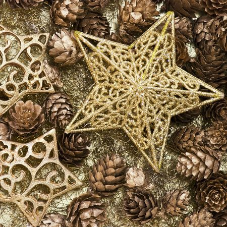 christmas decoration with golden star Stock Photo - 6076818