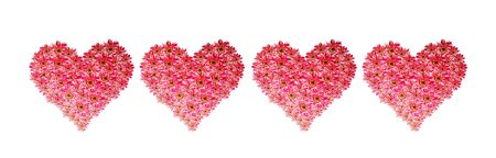 border of pink flower hearts Stock Photo - 6384261