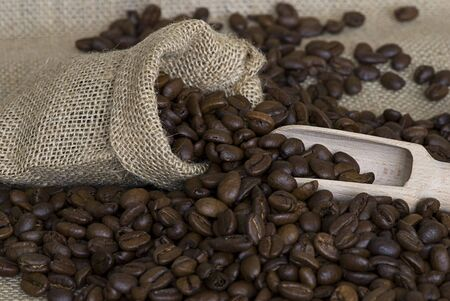 close up of coffee crop Stock Photo - 6534719