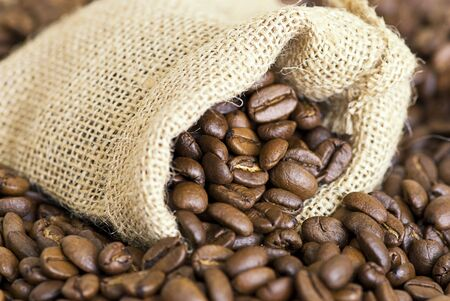 close up of coffee crop Stock Photo - 6534716