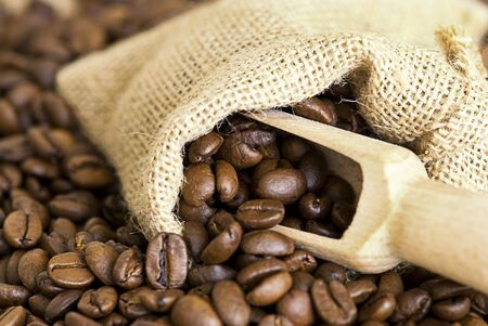 close up of coffee crop Stock Photo - 6550634