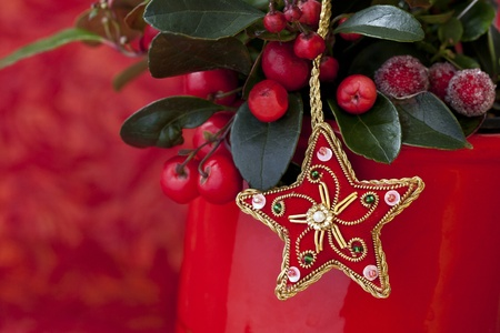 red berries and christmas decoration Stock Photo - 9832277