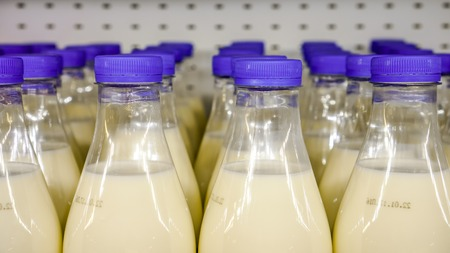 mass storage: fresh organic milk in plastic bottles with bright dark blue round covers against metal background in the shop, bottles with milk as dairy product for preparing breakfast wait for byers on market shelf