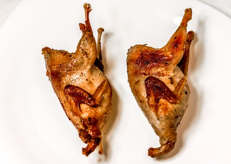 fry top view to two quail with crispy crust on big white plate. Roasted Partridge, quail grilling on sunny day. Culinary concept with delicious food.