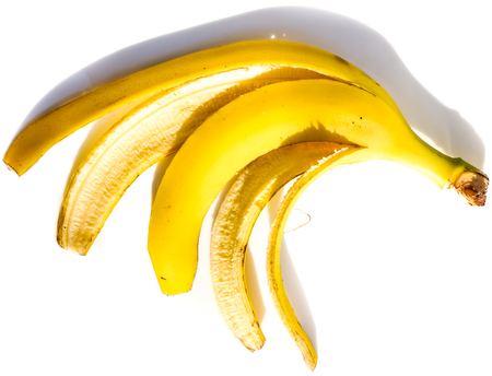 sunlight on one bright yellow banana skin without ripe inside lay on white plate as human five fingers. banana skin isolated on white background in sunshine