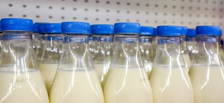 storage box: fresh organic milk in plastic bottles with bright dark blue round covers against metal background in the shop, bottles with milk as dairy product for preparing breakfast wait for byers on market shelf