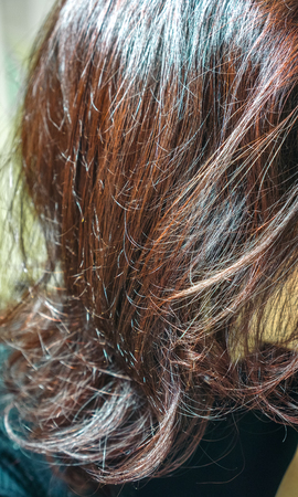 curls of ginger brown burgundy red hair with long waves and gradient effect in sunlight. Straight hair fragment as a texture. long hair as natural background