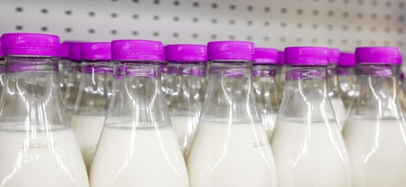 supermarket: violet covers with small vertical lines on plastic bottles with milk inside against metal background in shop, bottles with milk as dairy product for preparing breakfast wait for byers on market shelf Stock Photo