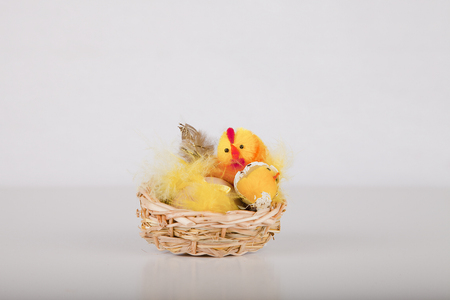Easter chicks in a wicker basket on a white surface. Easter decoration isolated on white background.