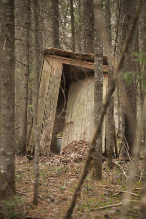 outhouse: Old abandoned wooden outhouse in the woods.