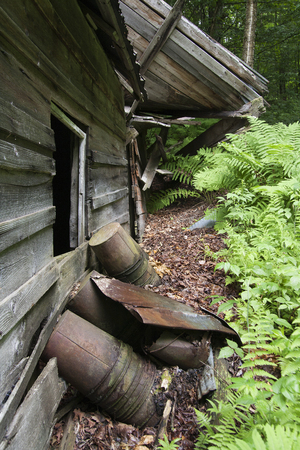 Old sugar house in the woods. Abandoned sugar shack in the forest. Stock Photo