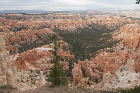 geological formation: Bryce Canyon National Park, Utah, USA.