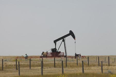 Oil rig in Alberta field, Canada. Oil pump in the prairie. Stock Photo