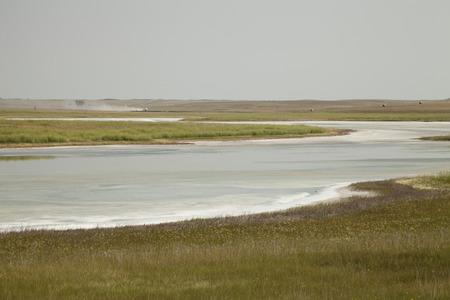 Fields of natural salt deposits in the prairies of Chaplin, Saskatchewan, Canada. Stock Photo