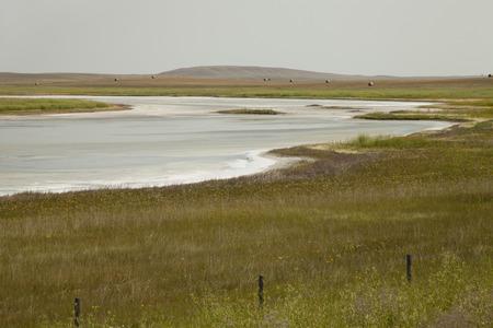 chaplin: Fields of natural salt deposits in the prairies of Chaplin, Saskatchewan, Canada. Stock Photo