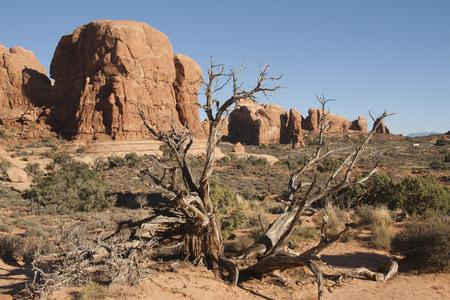 Natural rock formation at Arches National Park, Utah, USA.