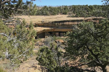 トウヒの木の家、メサベルデ国立公園、コロラド州、アメリカで古代の住居の遺跡します。 写真素材 - 84566955