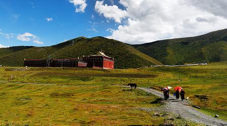 kandinsky: tibet grassland Editorial