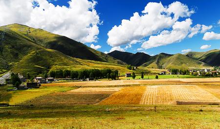 kandinsky: Xinduqiao autumn field