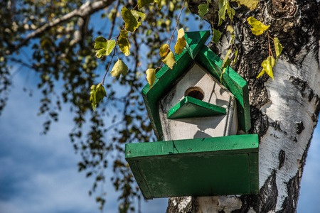 Birdhouse on a tree in the autumn forest. Bird nesting box on tree