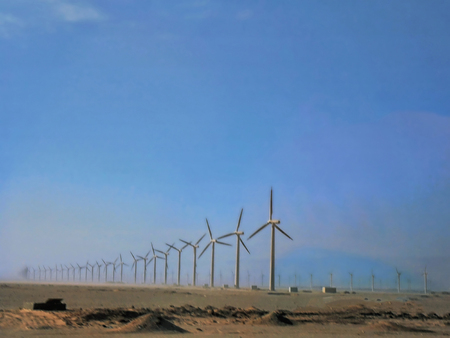 Egypt, North Africa, field with wind turbines