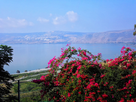 Beautiful view of the Sea of Galilee, Tiberias, Mount of  Blessedness, Israel, The Sermon on the Mount Stock Photo - 88800270
