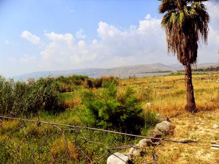 pila bautismal: Israel, Mar de Galilea, Tabgha, Iglesia de la multiplicación de panes y peces Fuente bautismal