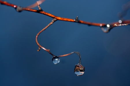 Beautiful water drops on the blue background