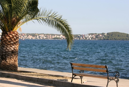 Adriatic sea with the palm and bench on the waterside