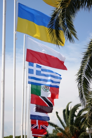 european economic community: Flags of the world blowing in the wind