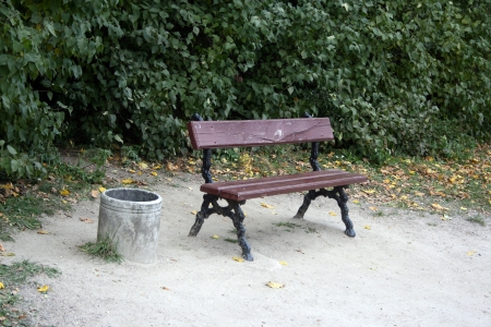 Lonely bench under the trees