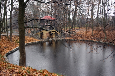 Autumnal park in rainy day. Arbor on the lake bank.  Stock Photo