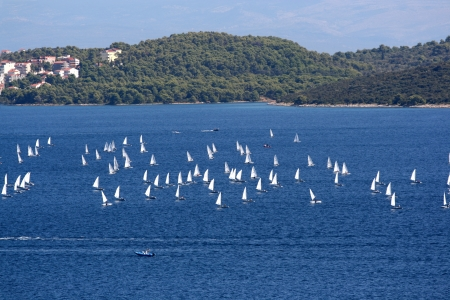 Many sailing boats in summerday.